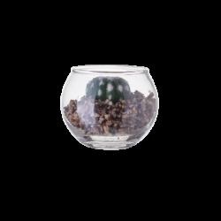 Vase Ball with Deco-Plants ⌀ 7 cm