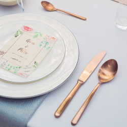 Table Knife - Faro PVD rose gold all satin
